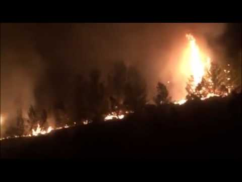 Isral Wildfires under control, Arab Arson Hinted at