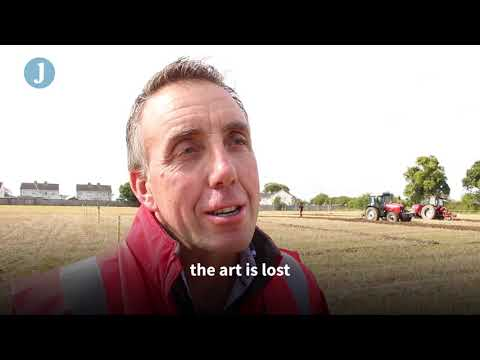 Irish ploughing experts share their tricks of the trade