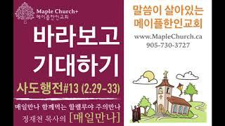 매일만나#13 바라보고 기대하기 (사도행전 2:29-33) | 정재천 담임목사 | 말씀이 살아있는 Maple Church