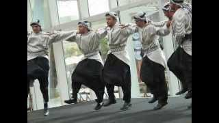 BEST PALESTINIAN DABKE SONG 2011