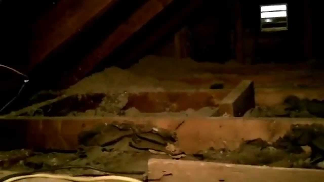 & DIY: Attic Blow in insulation and roof baffles. - YouTube