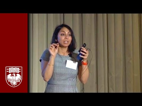 Harper Lecture with Yamuna Krishnan: Better Health through DNA Nanorobots