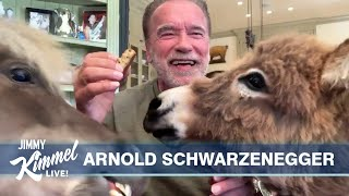 Arnold Schwarzenegger on Pandemic, Uniting Democrats & Republicans, and His Pets Whiskey & Lulu