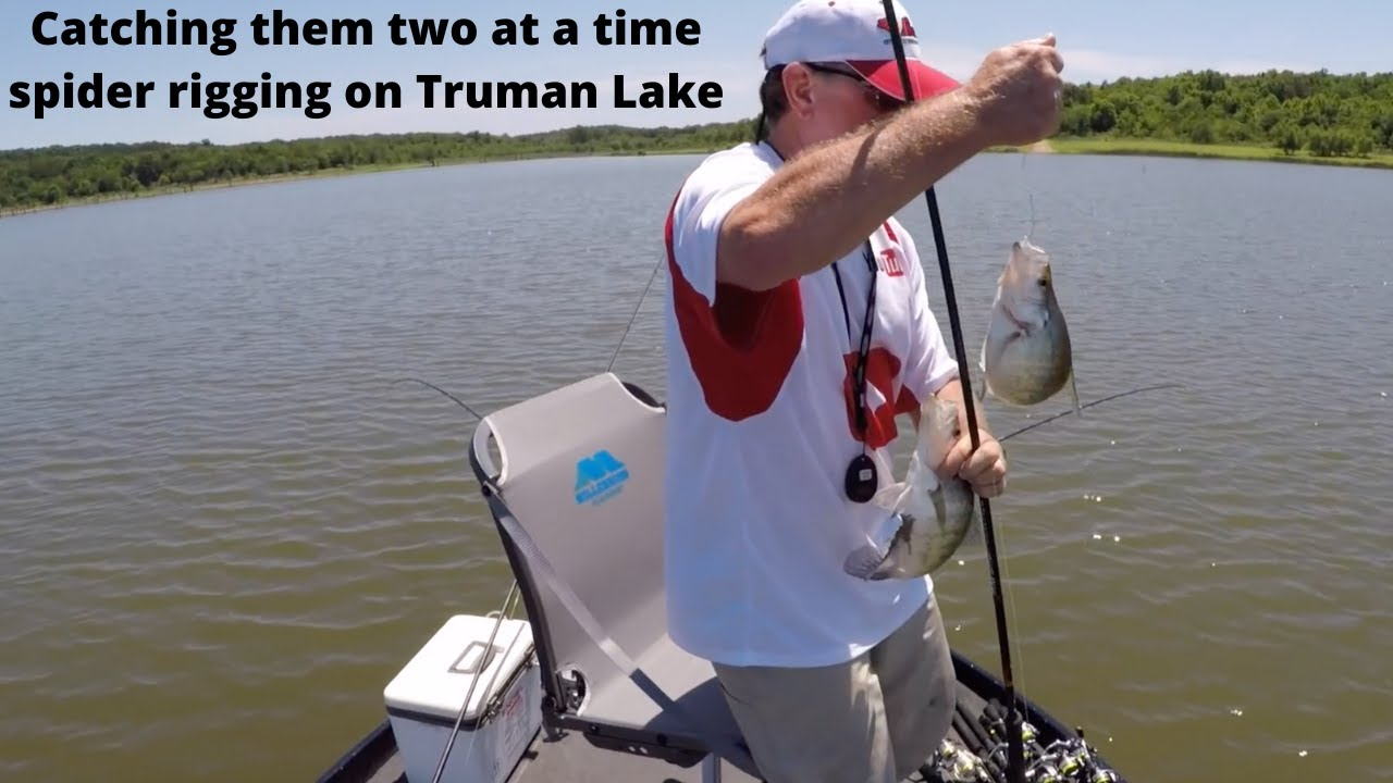 Spider rigging for crappie on truman lake 10 7 8 2017 for Truman lake fishing report