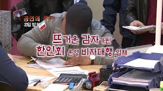 뜨거운 감자가된 한인회 비자대행 업체 (예고)본방20밤 8시
