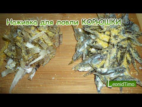 Наживка для ловли КОРЮШКИ. Leonid Timo