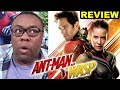 ANT-MAN and the WASP Review - The Fun Marvel Movie We Need Right Now?