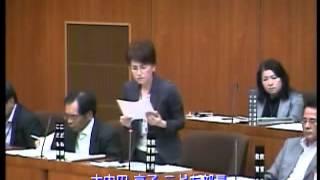 一般質問松田美由紀議員平成25年第4回9月定例会(3日目)