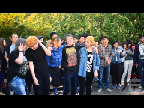 My Dream Is Not Enough - Видео-отчёт со Ставрополя и Элисты