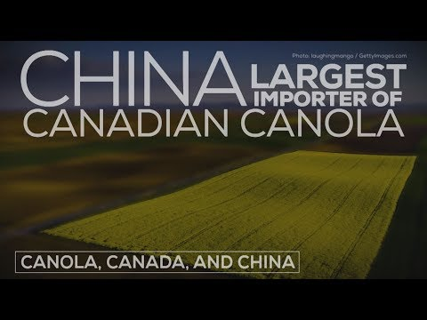 What Do You Need To Know About Canada's Canola Exports?
