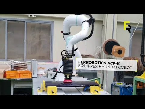 Hyundai cobot with active force compliant end-of-arm tool ACF-K by FerRobotics