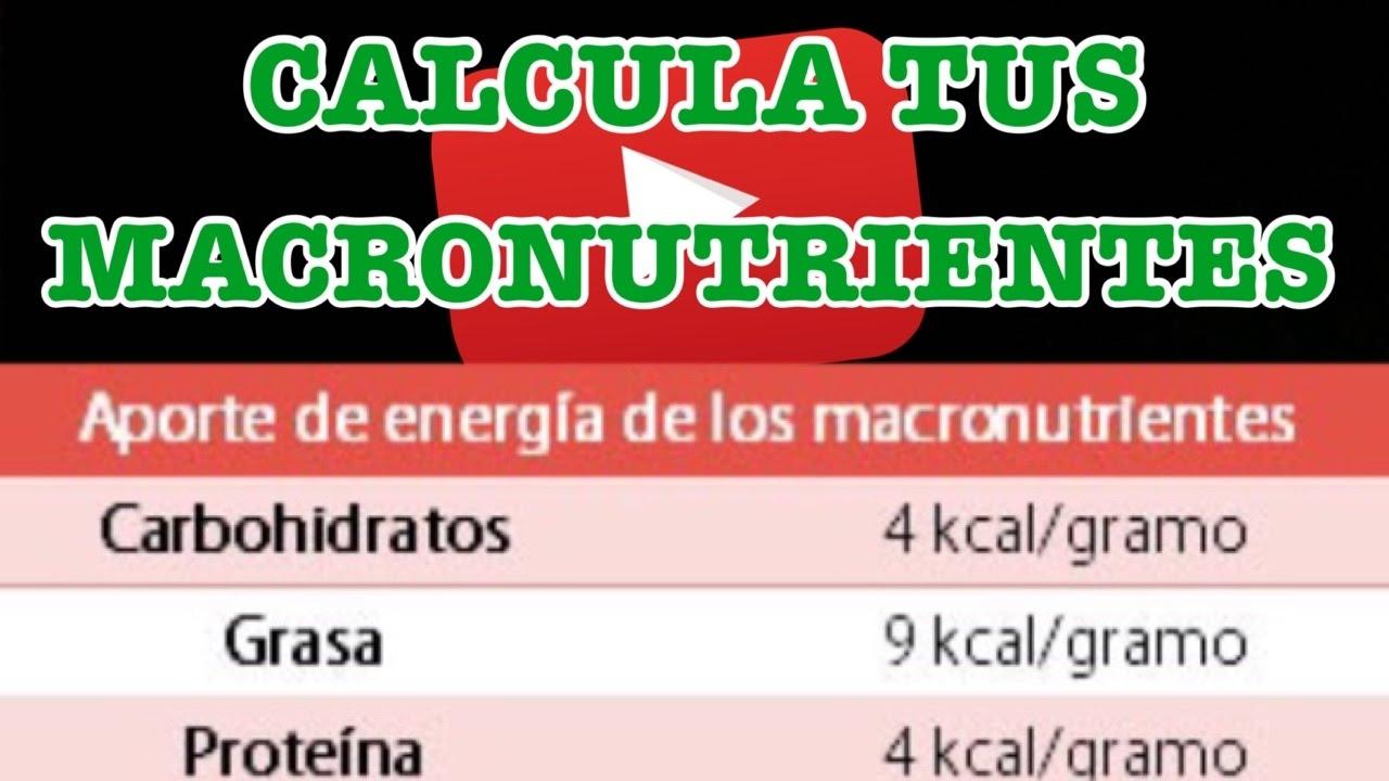 Porcentaje de macronutrientes para bajar de peso