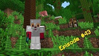 Minecraft Survival - Jungle Journey [43]