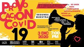 Provocación Covid  19 / Segunda Muestra