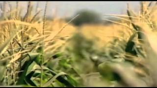 The Future of Food (2004) Official Trailer