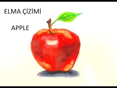 Elma Nasil Cizilir How To Draw An Apple Youtube