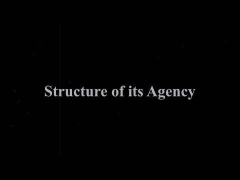 Structure of an Ad Agency Feat. Chunni Patta