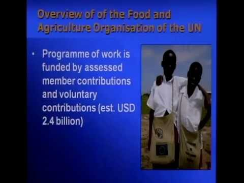 UN Food & Agriculture Organization &Other UN Agencies in Food Security Emergencies Part 1