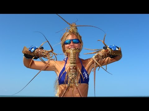 Florida Lobster: HOW TO Catch, Clean & Cook!