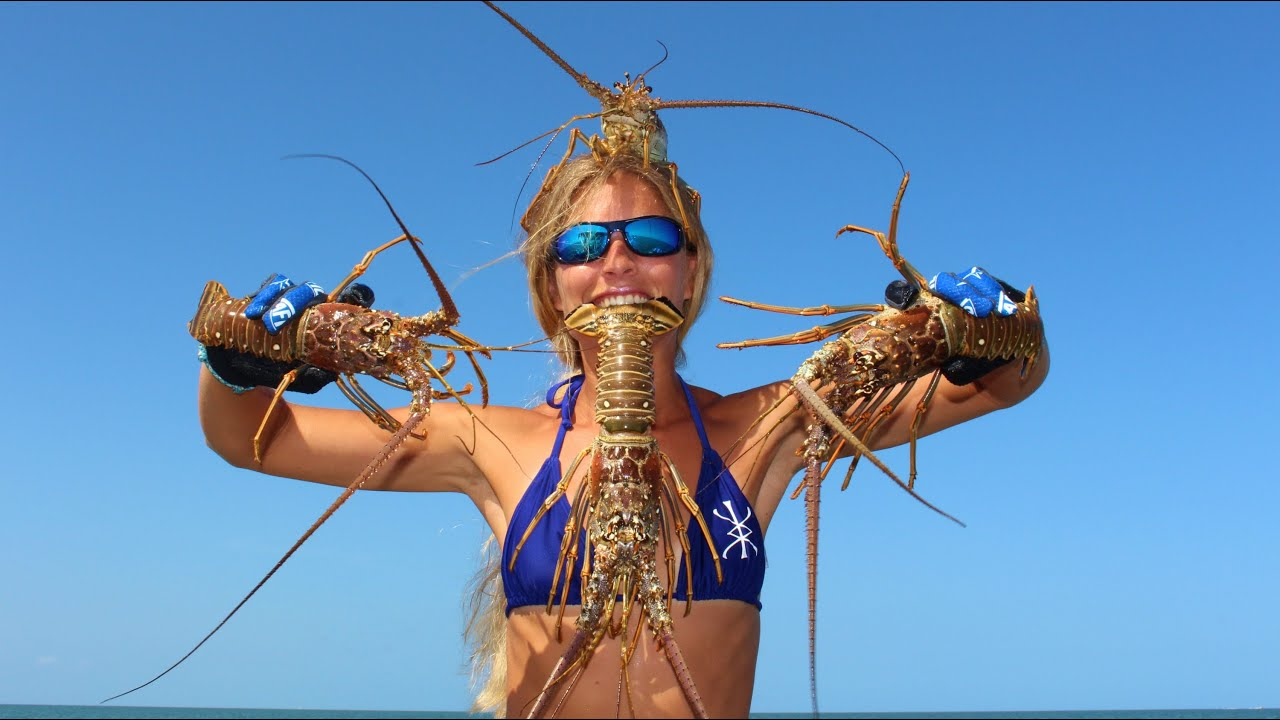 Florida Lobster: HOW TO Catch, Clean & Cook! - YouTube