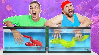 WHAT'S IN THE BOX CHALLENGE! (LIVE ANIMALS UNDERWATER)