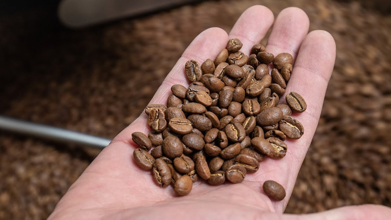 Coffee Cupping at Red Rock Roasters-A New Mexico True Experience