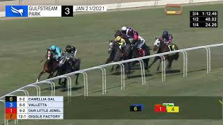 Vidéo de la course PMU STARTER ALLOWANCE 1700M