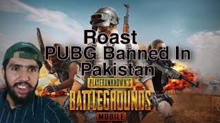 #UnBanPUBG  Pubg Ban In Pakistan Roast|Pakistani Tiktok Chutiyapa|Dear Pakistani Govt UNBAN PUBG|