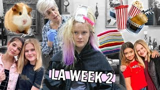 LA WEEK 2 | New Hair, Collabs, Moving In & MORE!