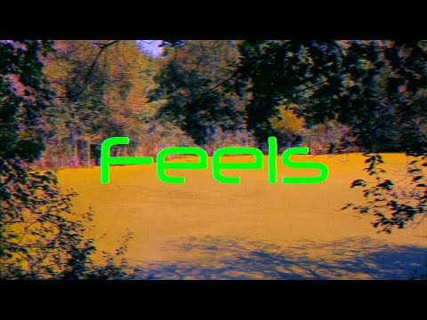 Calvin Harris - Feels ft. Pharrell, Katy Perry - (Nick Tangorra ft. Haylee Gold of The Dames Cover)