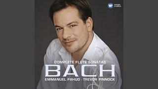 Flute Sonata in E Minor, BWV 1034: II. Allegro