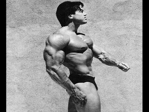 AESTHETIC BODYBUILDER -DON PETERS (golden era)