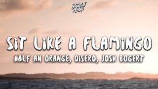 Download lagu HALF AN ORANGE, DISERO & JOSH BOGERT - SIT LIKE A FLAMINGO (LYRICS)