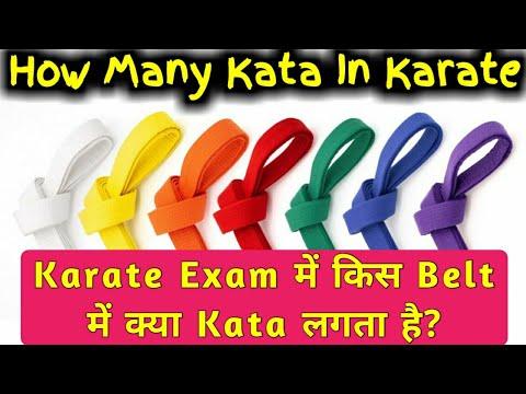 how many kata in karate From White Belt To Black Belt | Karate में किस Belt में क्या Kata लगता है?