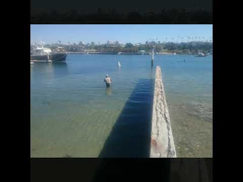 newport beach hookup