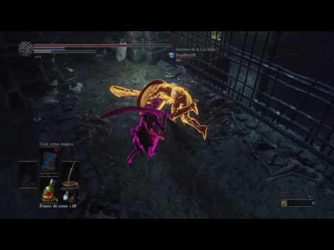 Witcher  Level  Dps Build