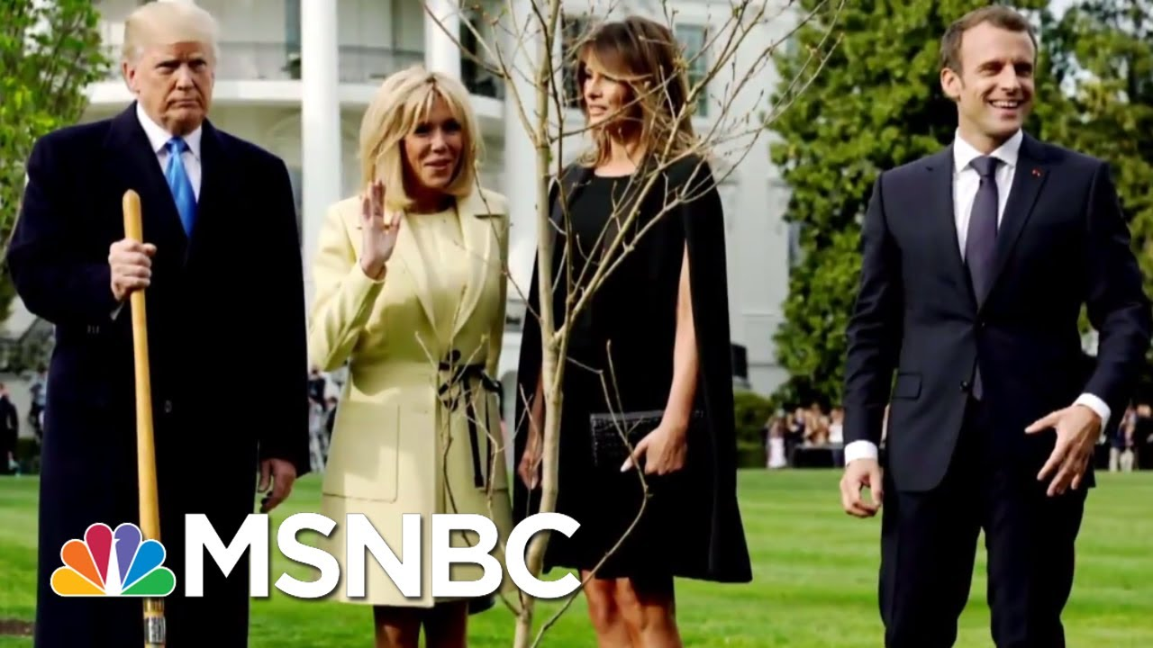 Mystery On The White House South Lawn | All In | MSNBC