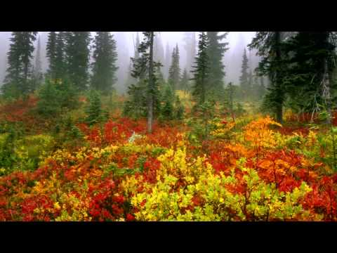 60 Amazing  Landscape Wallpapers