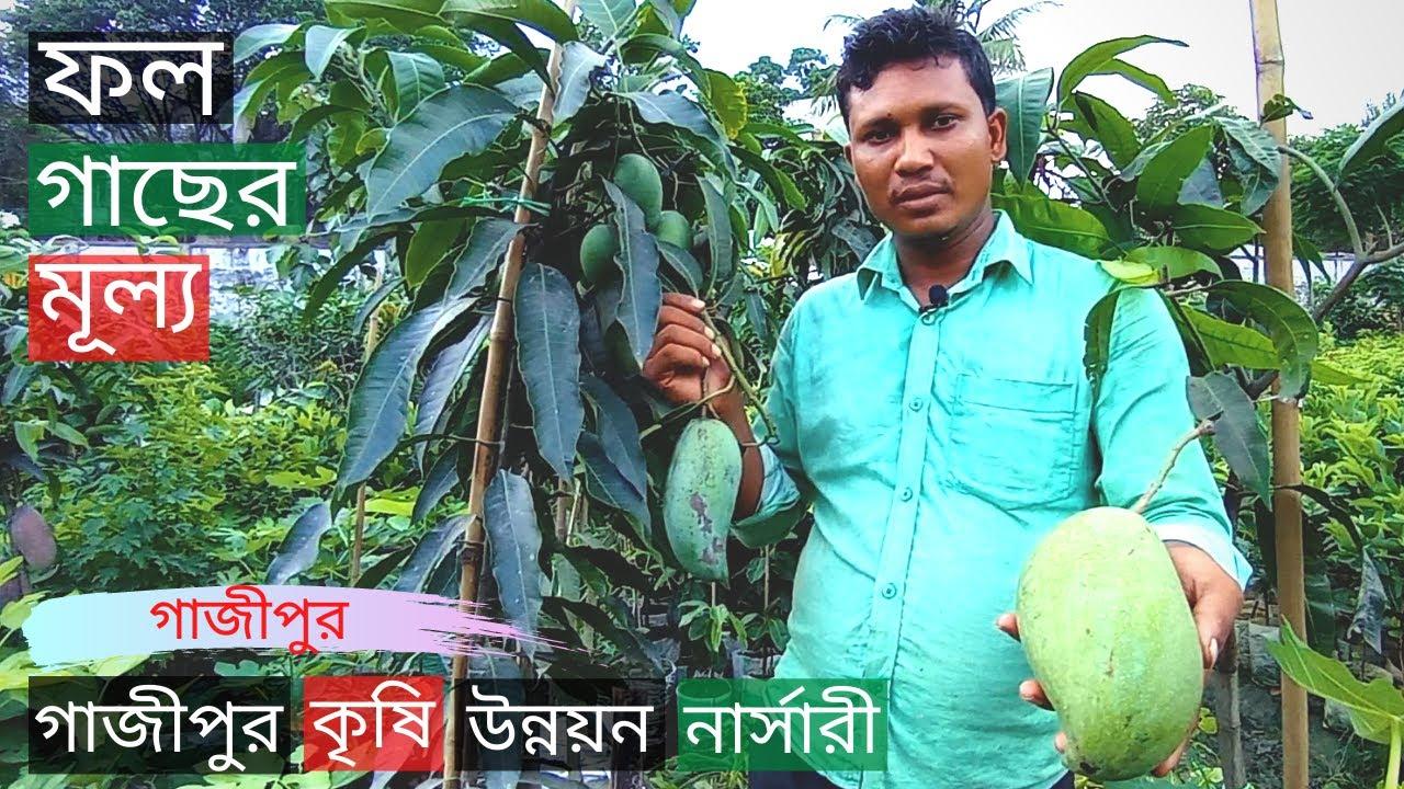 Fruit Tree Price In Gazipur Krishi Unnayan Nursery🥭ফল গাছের মূল্য🥑Gardening Bangladesh