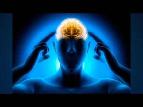 10 Makanan Penambah Daya Ingat dan Kecerdasan Otak