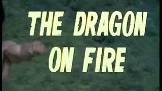 Wu Tang Collection - Trailer Dragon on Fire