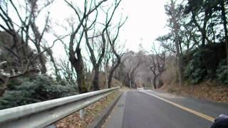 神奈川県平塚市の湘南平を登りました。 割と近所なのですが、自転車では...