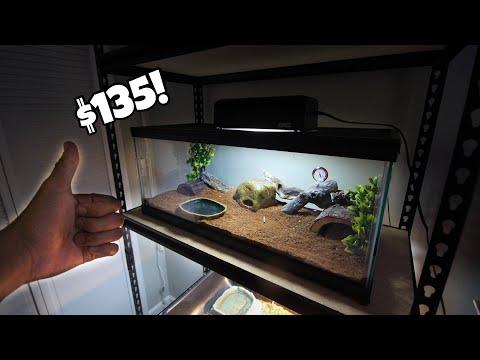 Naturalistic Leopard Gecko setup for $135!