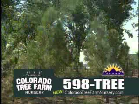 Colorado Tree Farm Nursery Tv Commercial Spring 12