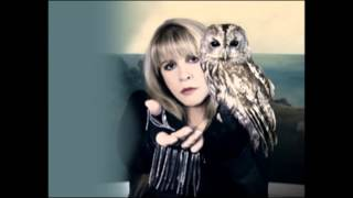 Stevie Nicks   I still Miss Someone