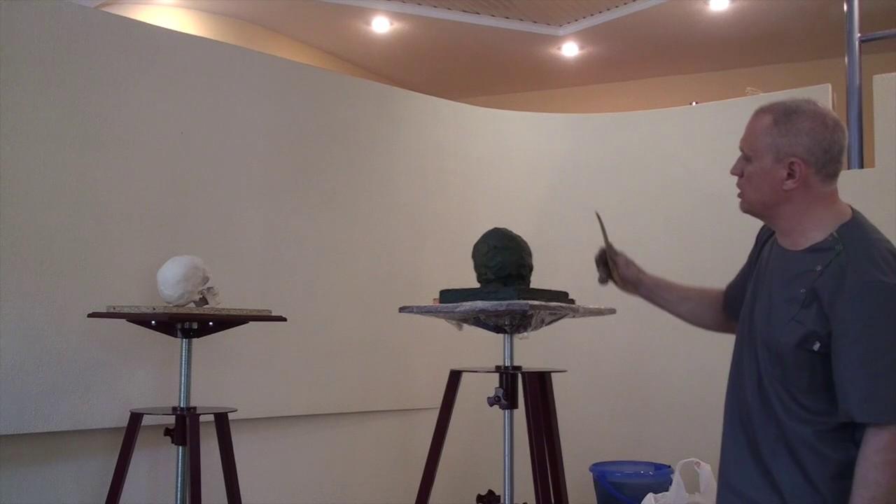 Уроки скульптуры и рисунка: лепка черепа человека, часть 1 (набор массы)