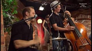 Sportfreunde Stiller feat Pelzig - Alles Roger (live 2009) HD 0815007