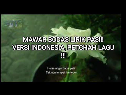 Irsya Chendikiawan   Mawar Putih / Mawar Bodas versi Indonesia