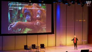 Saving the Last of the Wild: Are We Winning the Race to Save Vanishing Species? | WCS thumbnail