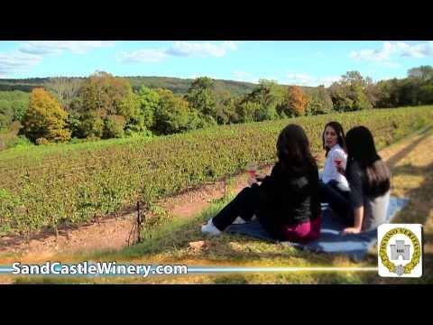 Sand Castle Winery Bucks County Wine Trail Tasting and Tour Erwinna Warrington PhoenixvillePA